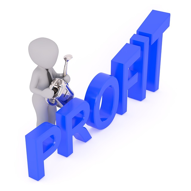 Profit, Wordmark, Figurative Mark, Marketing, Business
