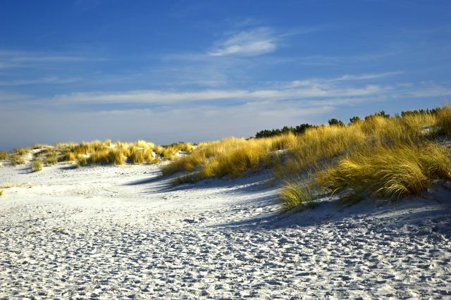 Dunes, Dune Landscape, Beach, Sand Beach, Marram Grass