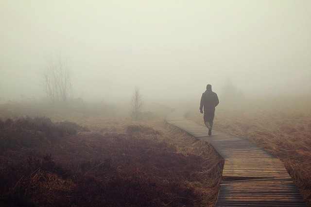 Fog, Moor, Marsh, Nebellandschaft, Person, Human, Swamp