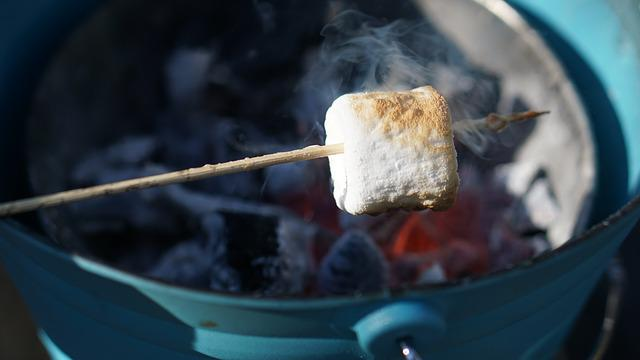 Marshmallow, Grilling, Charcoal, Fire, Grille, Glow