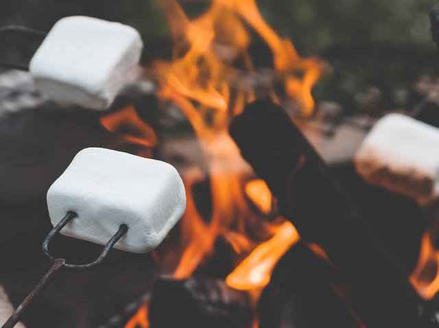 Marshmallow, Marshmallows, Campfire, Roasting, Summer