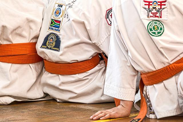 Karate, Martial Arts, Sport, Belt, Competition, Defense