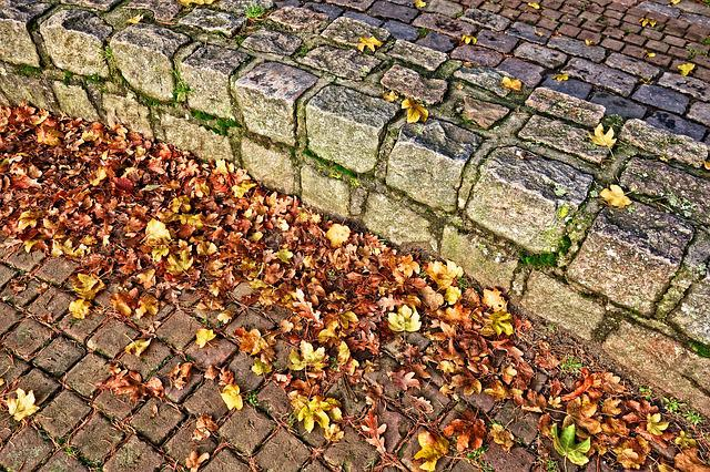 Wall, Stone, Curved Wall, Masonry, Structure, Leaves