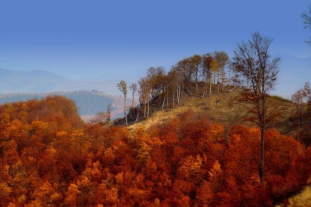 Hungary, Mátra Mountains, Landscape, Autumn Lights
