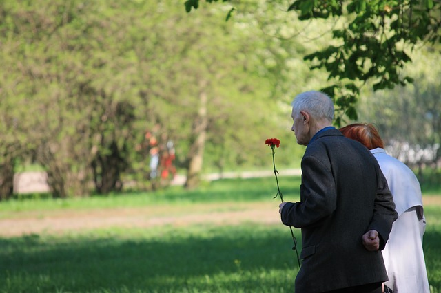 Veterans, Memory, Parade, May 9, Russia, Holiday