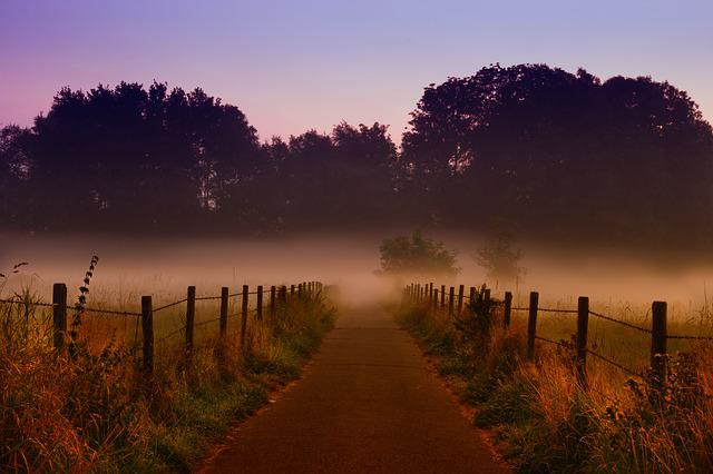 Dawn, Fog, Nebelschleier, Field, Meadow, Fence, Road
