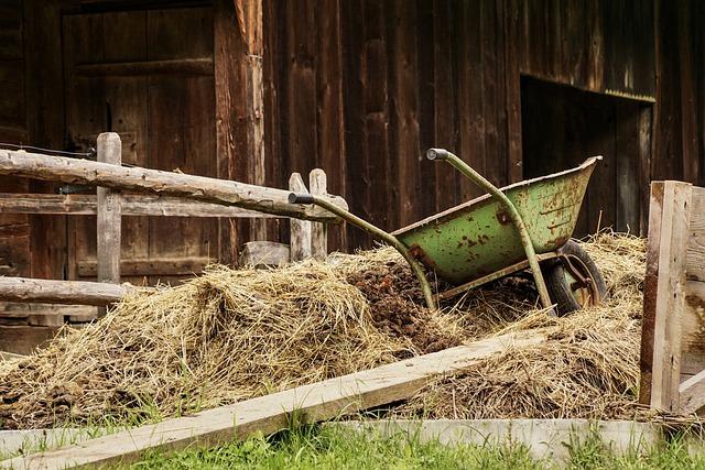 Barn, Farm, Dung, Wheelbarrow, Rural, Meadow, Stall