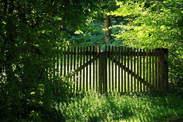 Wood Fence, Fence, Nature, Wood, Meadow, Limit