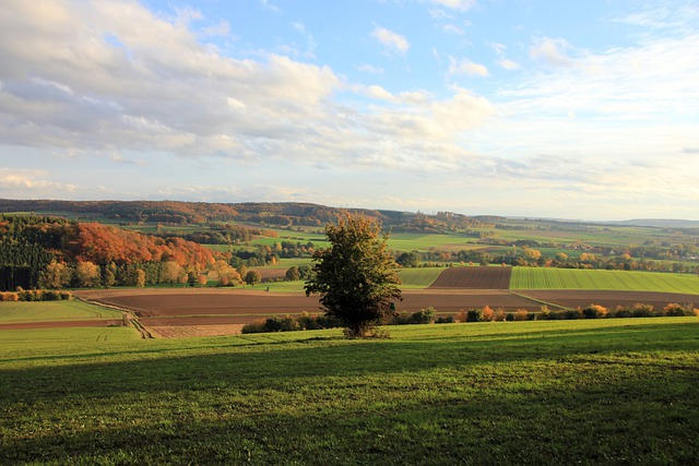 Landscape, Autumn, Weser Uplands, Tree, Field, Meadow