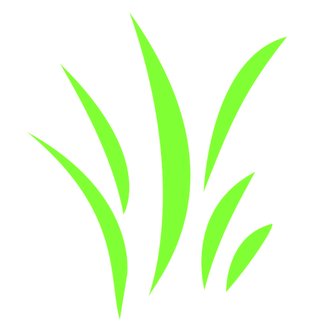 Icon, Grass, Grasses, Bloom, Green, Meadow, Nature