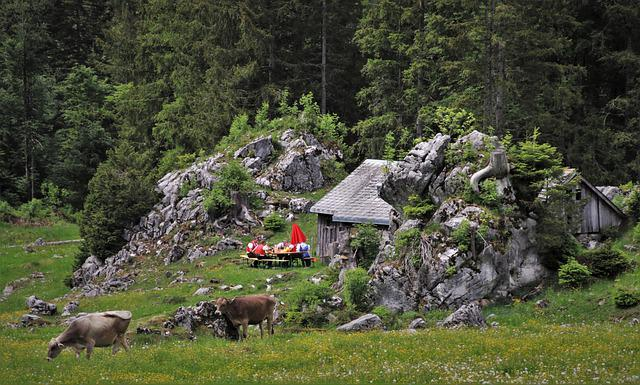 Meadow, Hat, Rocks, Appenzell, Grazing, Cow, Cottage