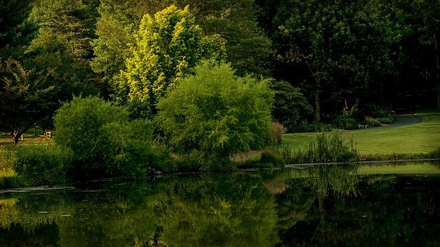 Virginia, Park, Meadow Lark Botanical Gardens, Walk