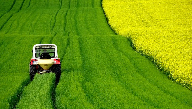 Field Of Rapeseeds, Tractor, Spring, Meadow, Landscape