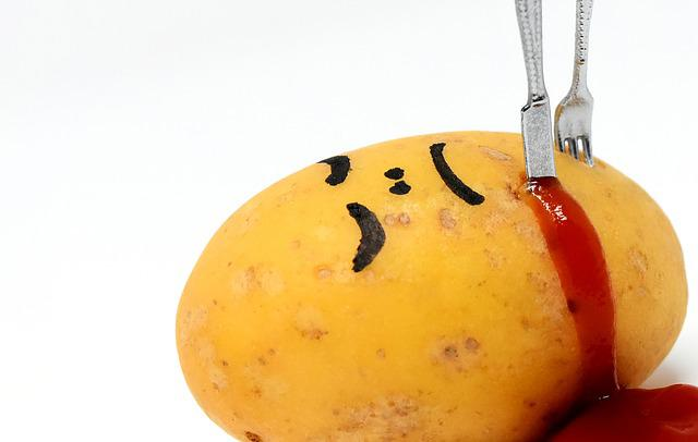 Potato, Meal, Ketchup, Knife, Fork