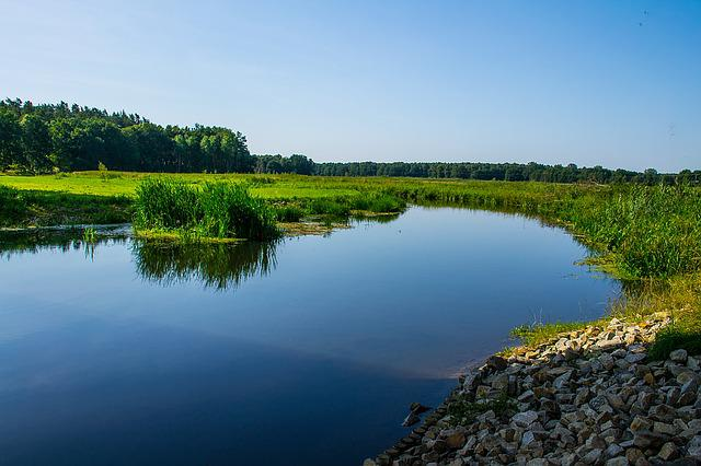 River Landscape, Bank, Reed, Mecklenburg, Blue, Sky