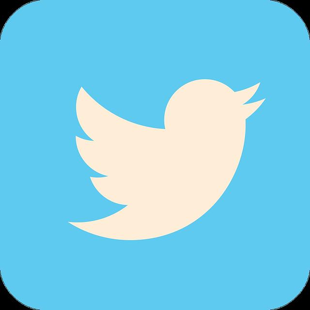 Twitter, Social Media, Icon, Social, Internet, Media