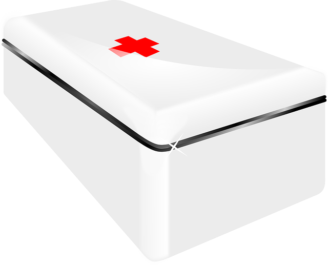 Aide, Assistance, First-aide, Box, Medical, Emergency