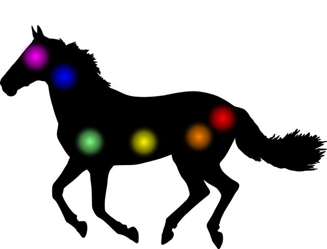 Aura, Chakra, Horse, Animal, Homeopathy, Medical