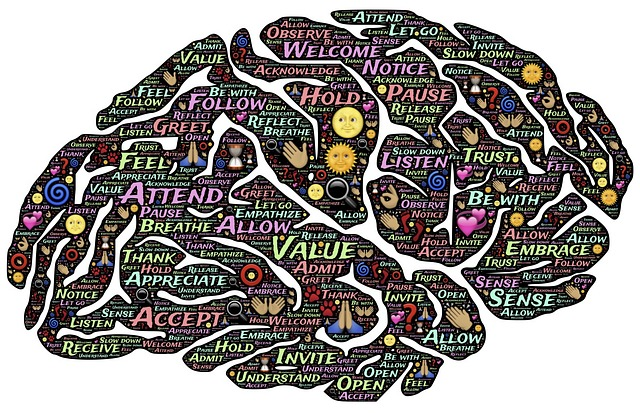 Brain, Mind, Presence, Mindset, Mindfulness, Meditation
