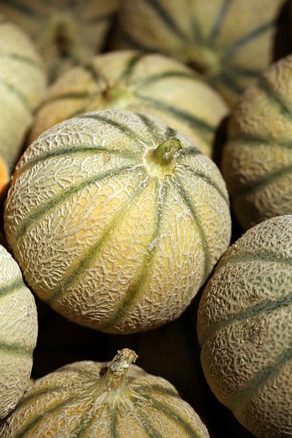 Melon, Fruit, Food