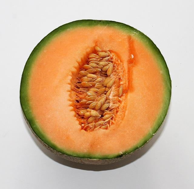 Melon, Food, Fruit, Orange, Foundry Core, Health