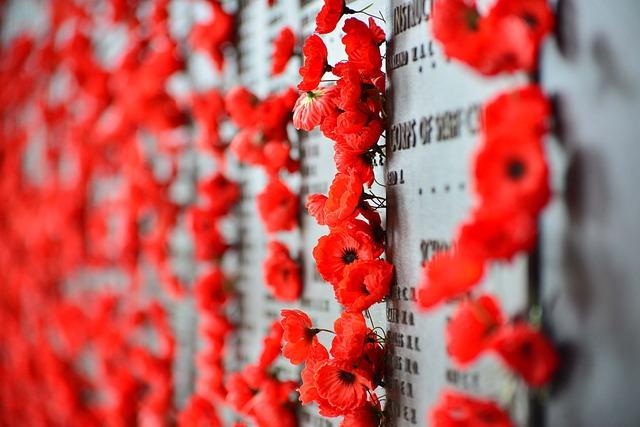 War Memorial, Canberra, Poppies, Memorial, War