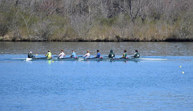 Mens Scull Rowing, Scull Rowing, Men, Rowing, Sport
