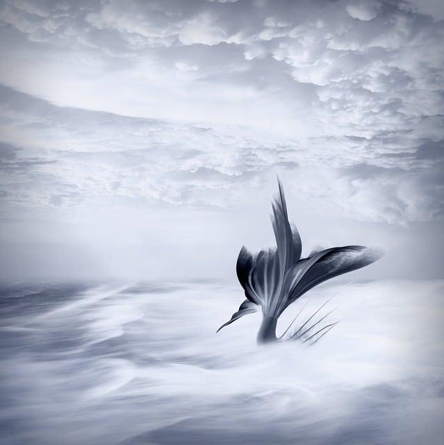 Background, Fantasy, Fairy Tale, Mermaid, Blue, Clouds