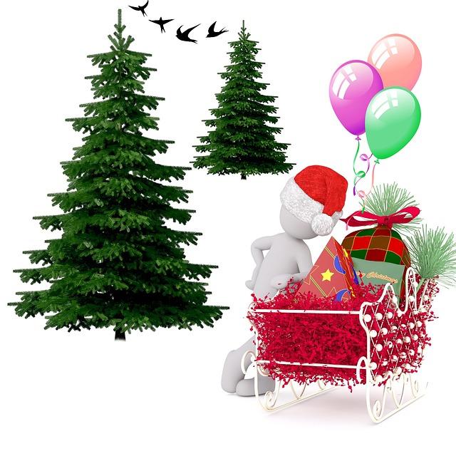 Fir, Christmas, Festival, Merry Christmas, Decorations