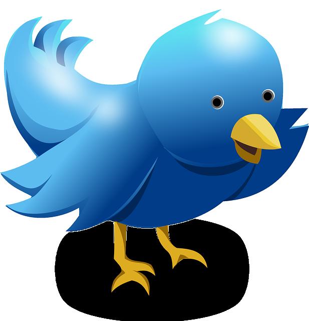 Twitter, Tweet, Bird, Funny, Cute, Blue, Messaging