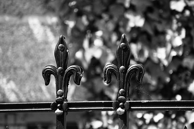 Wrought Iron, Fleur De Lis, Metal, Black And White