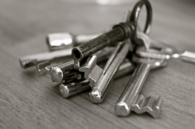 Key, Metal, Home, Security, Wedding, Entry, Door