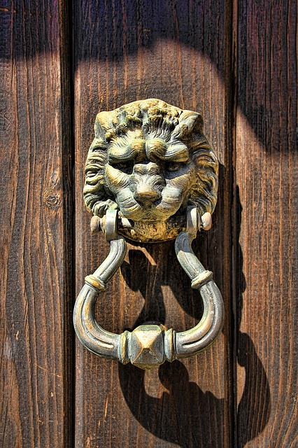 Doorknocker, Lion Head, Door, Metal, Input, Old, Ring
