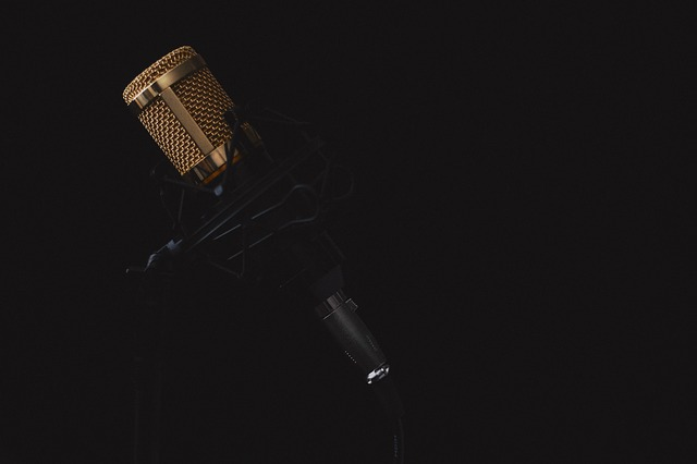 Microphone, Music, Sound, Mic, Musical, Audio, Vocal