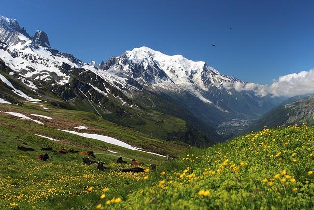 Mont Blanc, Tour Mont Blanc, Alps, Migration, Trekking