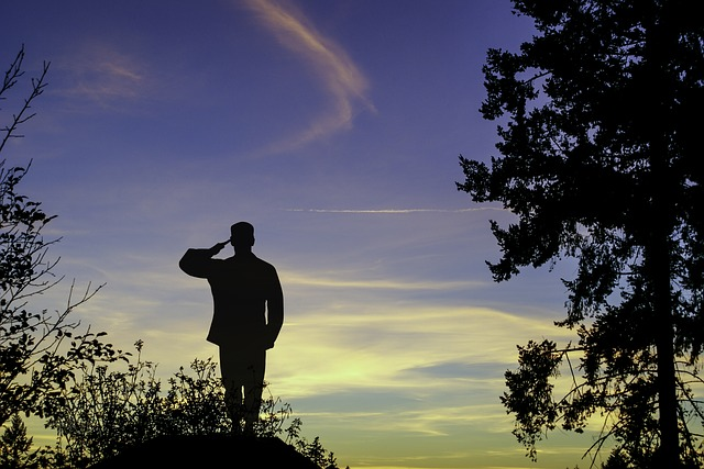 Soldier, Military, Salute, Sky, Silhouette, Evening