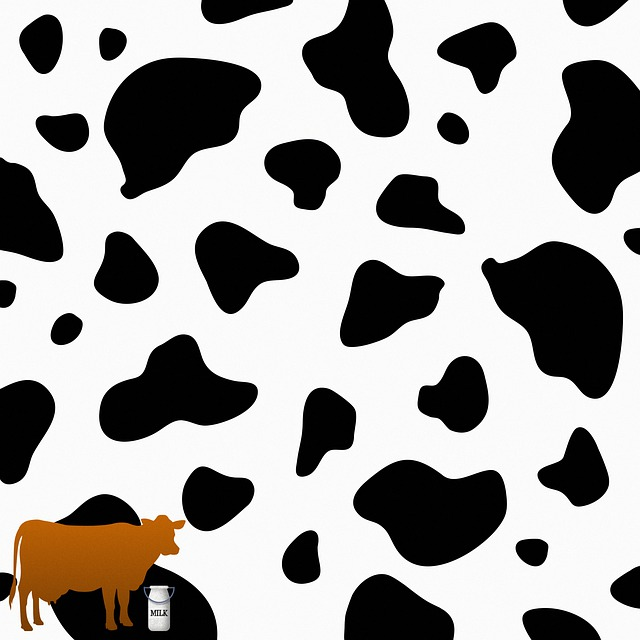 Cow, Milk Jug, Pattern, Background, Western, Animal
