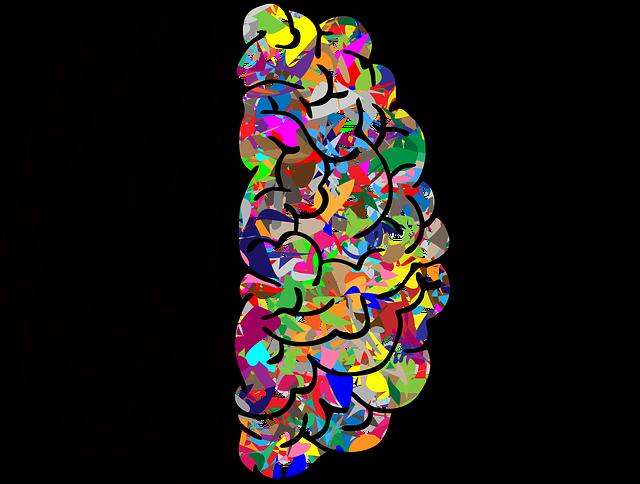 Brain, Mind, A, I, Ai, Anatomy, Artificial Intelligence