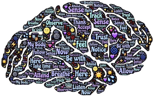 Meditation, Mindfulness, Reconditioning, Mind, Brain