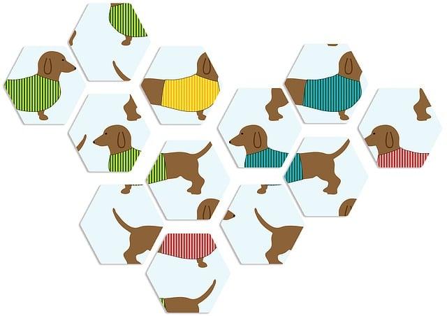 Dachshunds, Dog, Animal, Pet, Breed, Brown, Miniature