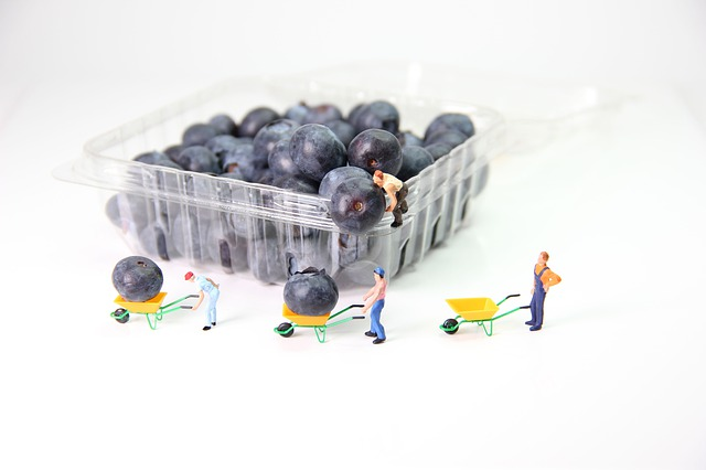 Blueberries, Transport, Miniature Figures, Wheelbarrow