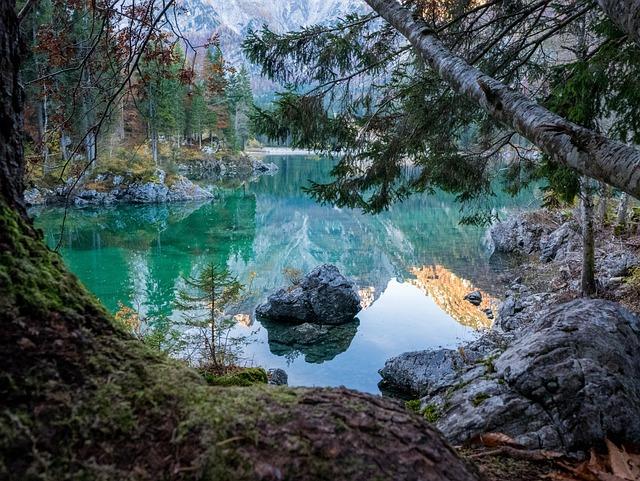 Italy, Lake, Morning, Mirroring, Reflection, Trees