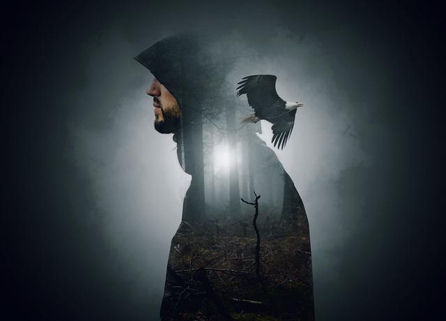 Man, Hooded, Wood, Mist, Fog, Branches, Trees, Light