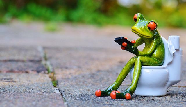Frog, Mobile Phone, Toilet, Loo, Wc, Funny, Session