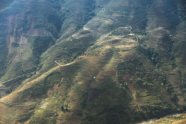 Terraces, Scenery, Paint A, Moc Chau, Magical, Field