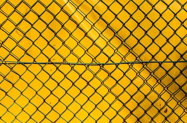 The Fence, The Grid, Yellow, Chain Link Fence, Model