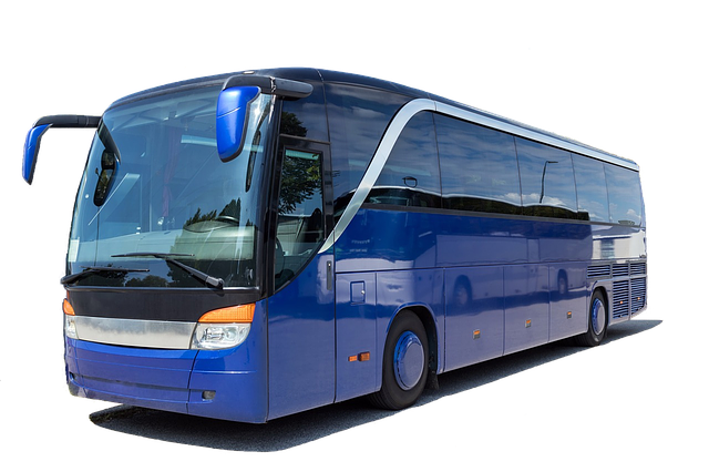 Coach, Bus, Holiday, Modern Bus, Autocar, Tourism