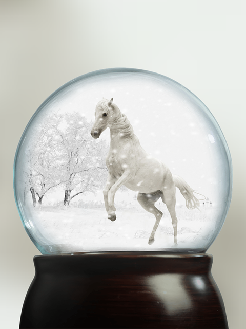 Snow Ball, Play Horse, Snow, Mold, Pasture, Coupling