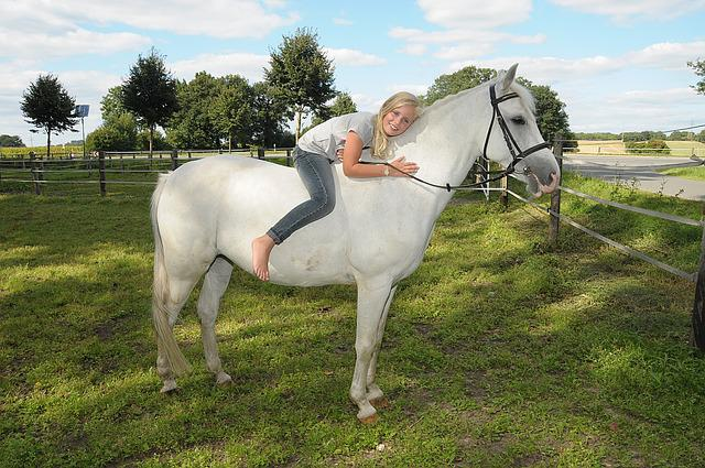 Pony, Girl, Mold, Summer