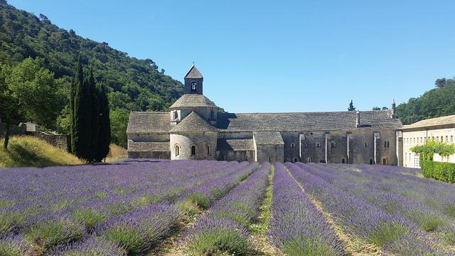 Abbaye, Sénanque, Provence, Lavender, France, Monastery